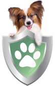 Compare Dog Insurance and Cat Insurance with Comprehensive Coverage.